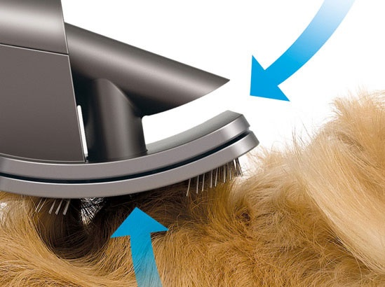 Grooming your dog's hair.